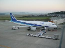 double_licenseさんが、花巻空港で撮影した全日空 A320-211の航空フォト(飛行機 写真・画像)