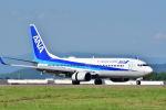 mike48さんが、旭川空港で撮影した全日空 737-881の航空フォト(写真)