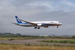 Satonさんが、仙台空港で撮影した全日空 787-9の航空フォト(飛行機 写真・画像)
