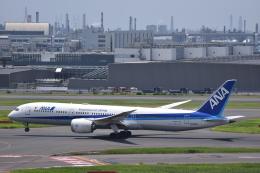 flying-dutchmanさんが、羽田空港で撮影した全日空 787-9の航空フォト(飛行機 写真・画像)