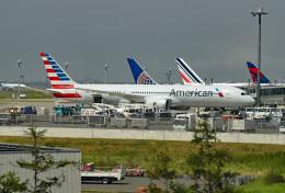 tsubasa0624さんが、羽田空港で撮影したアメリカン航空 787-9の航空フォト(写真)