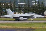 Chofu Spotter Ariaさんが、横田基地で撮影したアメリカ海軍 EA-18G Growlerの航空フォト(飛行機 写真・画像)
