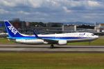 おみずさんが、伊丹空港で撮影した全日空 737-881の航空フォト(写真)