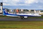 おみずさんが、伊丹空港で撮影した全日空 A321-272Nの航空フォト(写真)