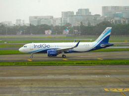 まいけるさんが、チャトラパティー・シヴァージー国際空港で撮影したインディゴ A320-271Nの航空フォト(飛行機 写真・画像)