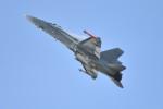 nobu2000さんが、フェアフォード空軍基地で撮影したフィンランド空軍 F/A-18C Hornetの航空フォト(写真)