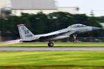 Flankerさんが、横田基地で撮影したアメリカ空軍 F-15D-35-MC Eagleの航空フォト(写真)