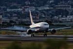 EarthScapeさんが、伊丹空港で撮影したANAウイングス 737-54Kの航空フォト(写真)