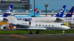 パンダさんが、成田国際空港で撮影したAVNエア G-IVの航空フォト(写真)