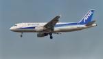 kenko.sさんが、名古屋飛行場で撮影したエアーニッポン A320-211の航空フォト(写真)