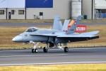 nobu2000さんが、フェアフォード空軍基地で撮影したスイス空軍 F/A-18C Hornetの航空フォト(写真)