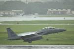 kon chanさんが、嘉手納飛行場で撮影したアメリカ空軍 F-15D-36-MC Eagleの航空フォト(写真)