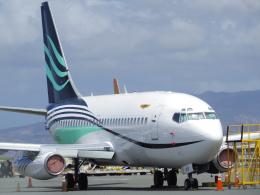 tmkさんが、ダニエル・K・イノウエ国際空港で撮影したトランスエア 737-2Q8/Advの航空フォト(飛行機 写真・画像)