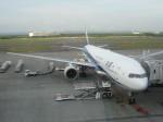 くまのんさんが、新千歳空港で撮影した全日空 777-381の航空フォト(飛行機 写真・画像)