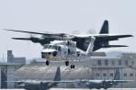 夏みかんさんが、名古屋飛行場で撮影した海上自衛隊 SH-60Kの航空フォト(写真)