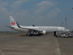 さゆりんごさんが、羽田空港で撮影した日本航空 737-846の航空フォト(写真)