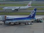 さゆりんごさんが、伊丹空港で撮影した日本航空 737-846の航空フォト(写真)