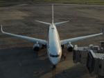 さゆりんごさんが、伊丹空港で撮影した全日空 737-881の航空フォト(写真)