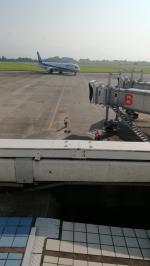 ふみたびさんが、鹿児島空港で撮影した全日空 787-9の航空フォト(写真)
