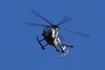 飛行機ゆうちゃんさんが、武山駐屯地で撮影した陸上自衛隊 OH-6Dの航空フォト(写真)