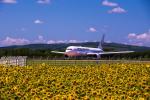 yumeさんが、女満別空港で撮影した日本航空 767-346/ERの航空フォト(写真)