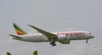 toyoquitoさんが、スワンナプーム国際空港で撮影したエチオピア航空 787-8 Dreamlinerの航空フォト(写真)