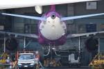 JAA DC-8さんが、伊丹空港で撮影したピーチ A320-214の航空フォト(写真)