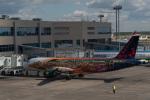 はやたいさんが、ドモジェドヴォ空港で撮影したブリュッセル航空 A320-214の航空フォト(写真)