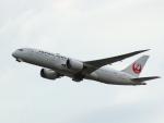 なまくら はげるさんが、羽田空港で撮影した日本航空 787-8 Dreamlinerの航空フォト(写真)