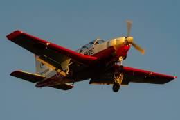 White.さんが、岐阜基地で撮影した航空自衛隊 T-7の航空フォト(写真)