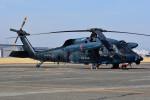 はるかのパパさんが、名古屋飛行場で撮影した航空自衛隊 UH-60Jの航空フォト(写真)