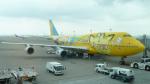 ちゃぽんさんが、羽田空港で撮影した全日空 747-481(D)の航空フォト(写真)