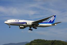 きったんさんが、福岡空港で撮影した全日空 777-281/ERの航空フォト(写真)