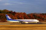 @あきやんさんが、岡山空港で撮影した全日空 PA-42-720 Cheyenne IIIAの航空フォト(飛行機 写真・画像)