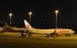 toyoquitoさんが、ドンムアン空港で撮影したタイ・ライオン・エア 737-9-MAXの航空フォト(写真)