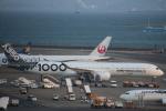 まーちらぴっどさんが、羽田空港で撮影したエアバス A350-1041の航空フォト(写真)