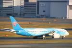 まーちらぴっどさんが、羽田空港で撮影した中国南方航空 787-8 Dreamlinerの航空フォト(写真)
