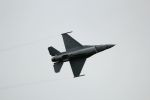 NASDAJAXAさんが、札幌飛行場で撮影したアメリカ空軍 F-16CM-50-CF Fighting Falconの航空フォト(写真)