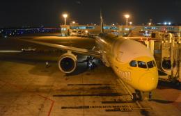 toyoquitoさんが、ドンムアン空港で撮影したスクート 787-8 Dreamlinerの航空フォト(飛行機 写真・画像)