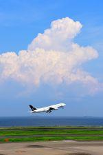 まいけるさんが、羽田空港で撮影した全日空 777-281の航空フォト(写真)