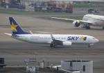 Daidai☆彡さんが、羽田空港で撮影したスカイマーク 737-8ALの航空フォト(写真)