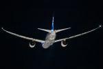 かぷちーのさんが、伊丹空港で撮影した全日空 787-8 Dreamlinerの航空フォト(写真)