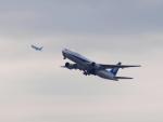 なまくら はげるさんが、羽田空港で撮影した全日空 777-381/ERの航空フォト(写真)
