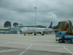 flyingmasさんが、タンソンニャット国際空港で撮影したベトナム航空 A321-231の航空フォト(写真)