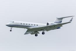 Y-Kenzoさんが、成田国際空港で撮影したノリノール・エビエーション G-V-SP Gulfstream G550の航空フォト(飛行機 写真・画像)