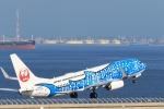 masa2525さんが、中部国際空港で撮影した日本トランスオーシャン航空 737-8Q3の航空フォト(写真)