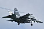 kon chanさんが、嘉手納飛行場で撮影したアメリカ海兵隊 F/A-18D Hornetの航空フォト(写真)