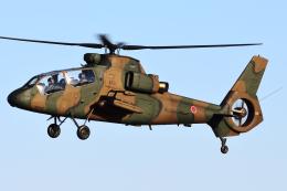Flankerさんが、入間飛行場で撮影した陸上自衛隊 OH-1の航空フォト(飛行機 写真・画像)