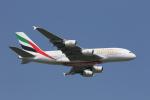 ムッシュさんが、成田国際空港で撮影したエミレーツ航空 A380-861の航空フォト(写真)