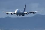 くれないさんが、関西国際空港で撮影したタイ国際航空 A380-841の航空フォト(写真)
